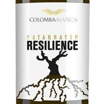 Resilience Catarratto DOC Sicily White Dove Colomba Bianca